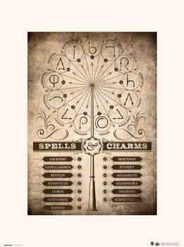 Harry Potter - Spells & Charms Reproduction de Tableau