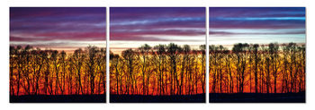 Red forest Tableau Multi-Toiles