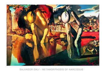 Reproduction d'art Salvador Dali - Metamorphosis Of Narcissus