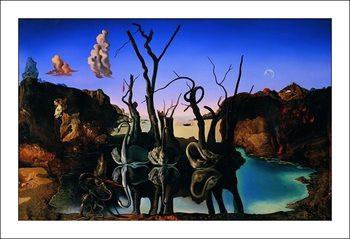 Salvador Dali - Reflection Of Elephants Reproduction de Tableau