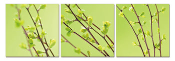 Twigs on green canvas Tableau Multi-Toiles
