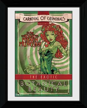 Batman Comic - Circus Poison Ivy tablou Înrămat cu Geam