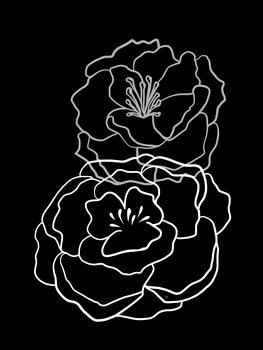 Tablou Canvas Black Poppies