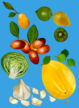 Tablou Canvas Fruit & veggies 2020
