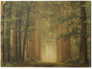 Tablou Canvas Lars Van De Goor - The Portal