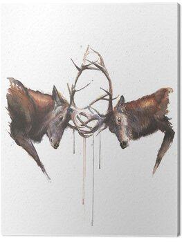 Tablou Canvas Sarah Stokes - Headstrong