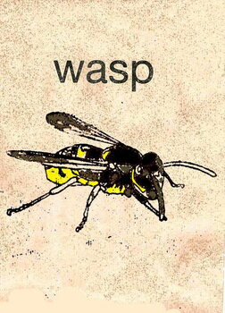 Tablou Canvas 'Wasp' 2014