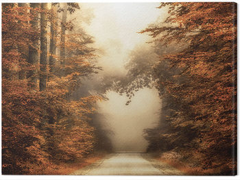 Lars Van De Goor - Fall In Love Tablou Canvas