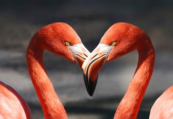 Tablouri pe sticla Love Flamingoes