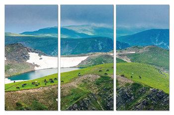 Green mountains Tablou