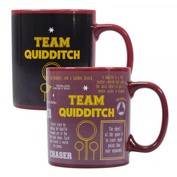 Taza Harry Potter - Quidditch
