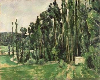 The Poplars, c.1879-82 Festmény reprodukció
