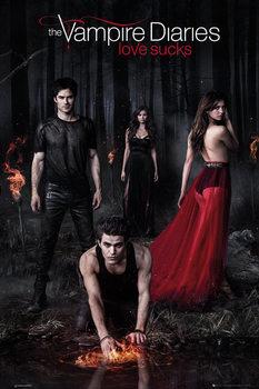 The Vampire Diaries - Woods - плакат (poster)