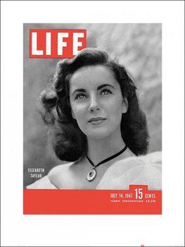 Time Life - Life Cover - Elizabeth Taylor kép reprodukció