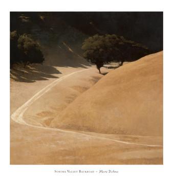 Sonoma Valley Backroad Reprodukcija umjetnosti