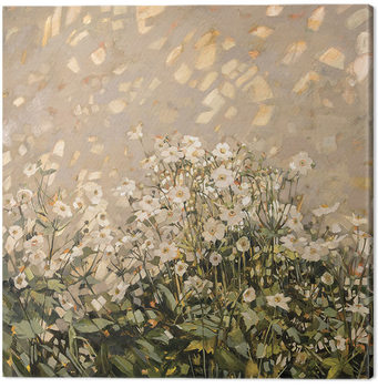 Tableau sur Toile Anne-Marie Butlin - Morning Sun on Japanese Anemones