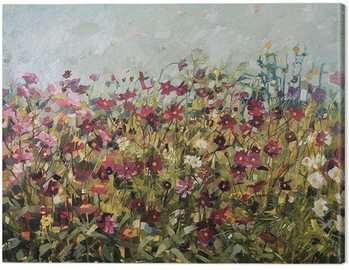 Tableau sur Toile Anne-Marie Butlin - Pink Cosmos