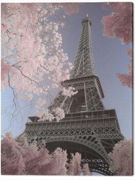 Tableau sur Toile David Clapp - Eiffel Tower Infrared, Paris