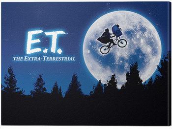 Tableau sur Toile ET - Quad