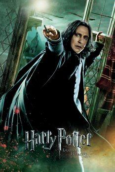 Tableau sur Toile Harry Potter - Les Reliques de la Mort - Rogue