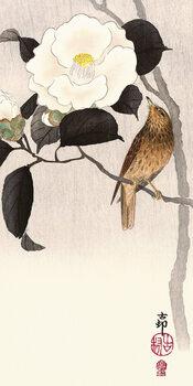 Tableau sur Toile Ohara Koson - Songbird and Flowering Camellia