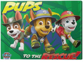 Pat' Patrouille - Pups To The Rescue Tableau sur Toile
