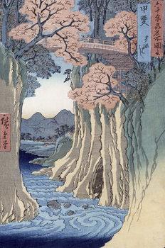 Tableau sur Toile The monkey bridge in the Kai province,