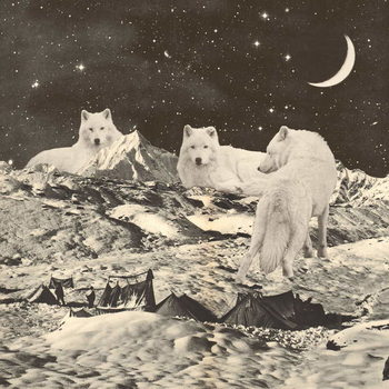 Tableau sur Toile Three Giant White Wolves on Mountains