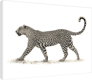 Mario Moreno - The Leopard Tableau sur Toile