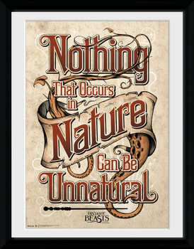 Legendás állatok és megfigyelésük - Nature üveg keretes plakát