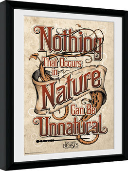 Legendás állatok és megfigyelésük - Nature Keretezett Poszter