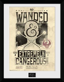 Legendás állatok és megfigyelésük - Wanded üveg keretes plakát