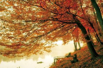 Üvegkép Tree - Colored Tree