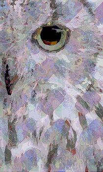 Owl3 Reprodukcija umjetnosti