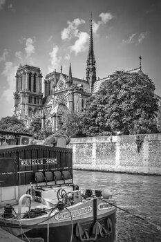 Ilustracija PARIS Cathedral Notre-Dame   monochrome