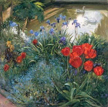 Red Tulips and Geese Reprodukcija umjetnosti