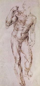 Sketch of David with his Sling, 1503-4 Reprodukcija umjetnosti