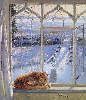 Sundial and Cat Reprodukcija umjetnosti