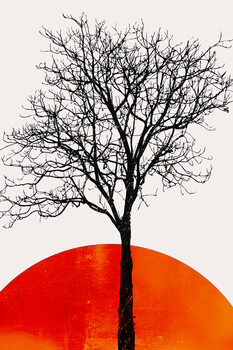 Ilustracija The Birch