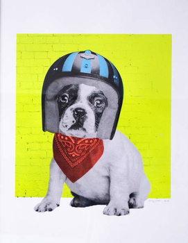 Easy Rider, 2016, Reprodukcija umjetnosti