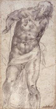 Figure Study Reprodukcija umjetnosti