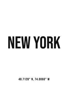 Ilustracija New York simple coordinates