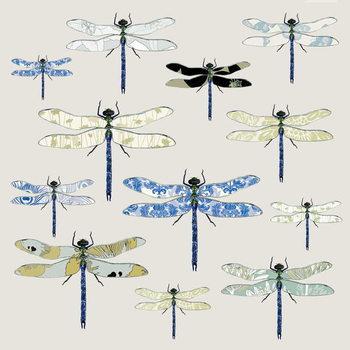 Odonata, 2008 Reprodukcija umjetnosti