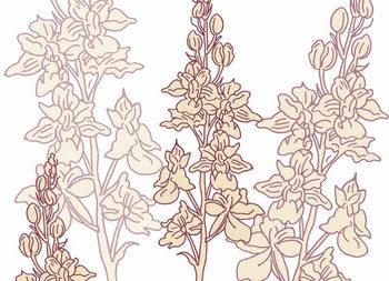 Orchid, 2017, Reprodukcija umjetnosti