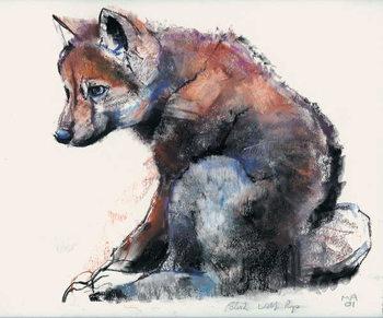 Polish Wolf Pup, 2001 Reprodukcija umjetnosti