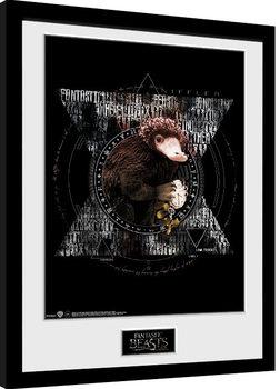 Fantastic Beasts - Niffler Circle Uramljeni poster