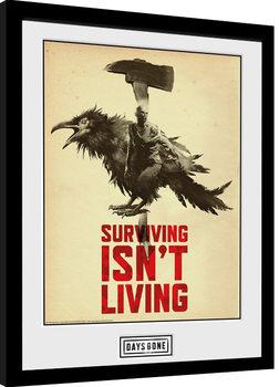 Days Gone - Crow Uokvirjeni plakat