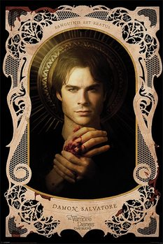 VAMPIRE DIARIES - d.salvatore - плакат (poster)