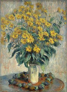 Vászonkép Jerusalem Artichoke Flowers, 1880