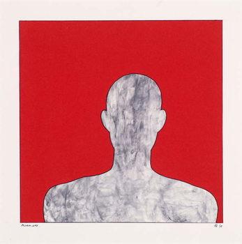 Vászonkép Pilgrim on red